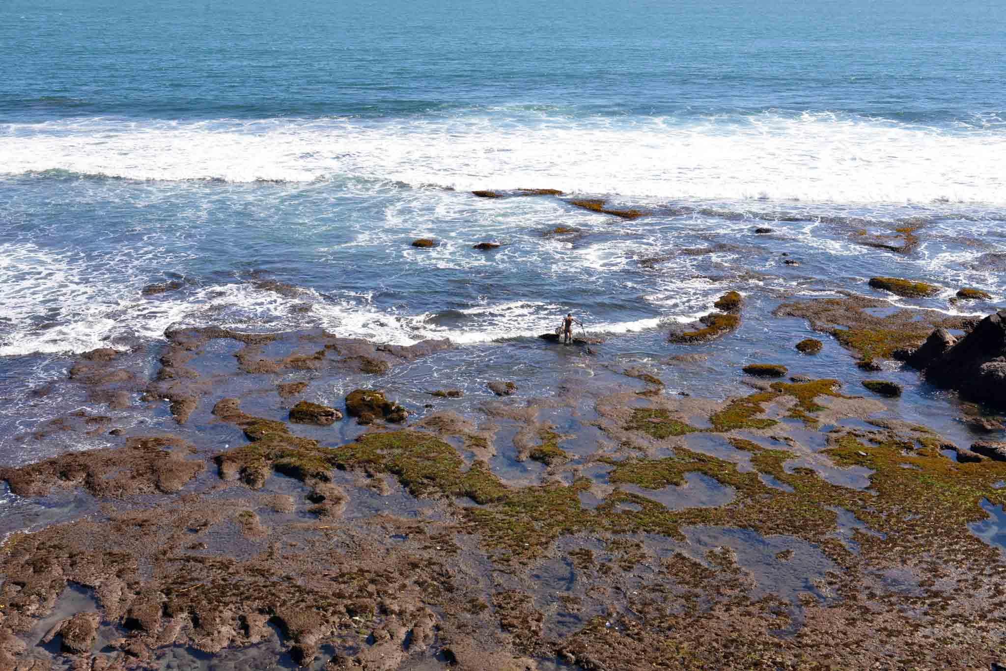 Lone Fisherman at lowtide, bali