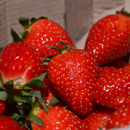 Strawberries from our landlady!