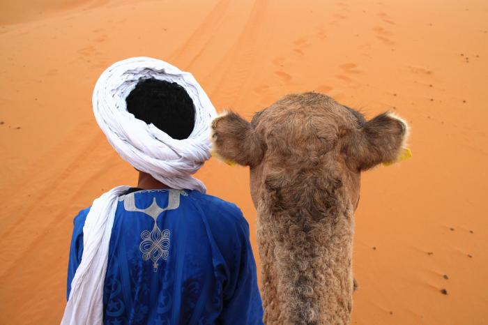 Camel Trekking Timelapse - Merzouga, Morocco