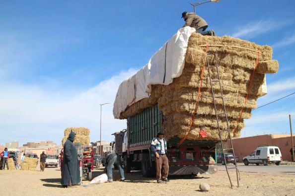Loading the truck with hay