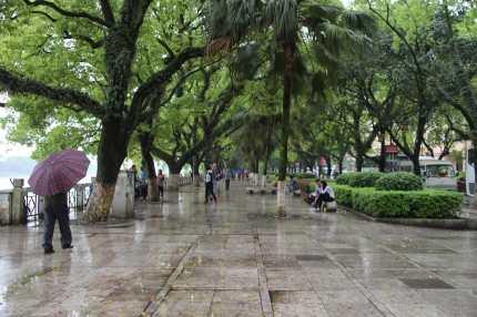 Constant Rain