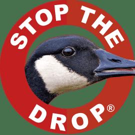 Geese Repellent Goose Deterrent