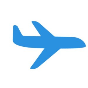 flightsale
