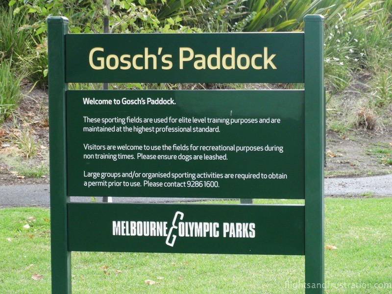 Gosch's Paddock hosted the melbourne storm family fun day
