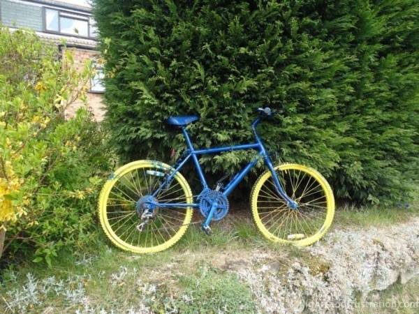 Blue and primrose bicycle