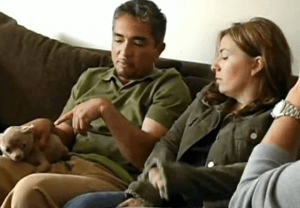 """Cesar Milan discussing """"Calm Energy"""" with the owners of an aggressive chihuahua"""