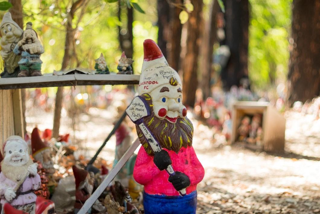 gnome (1 of 1)-5