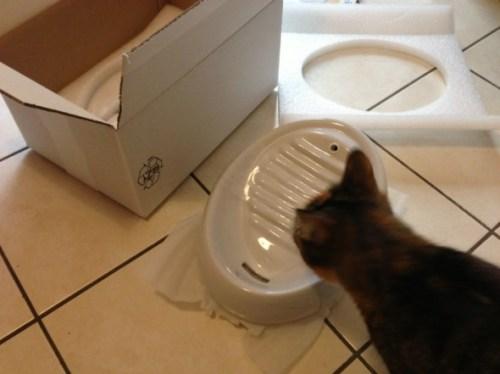 Lucky-Kitty Keramik Katzenbrunnen (2)