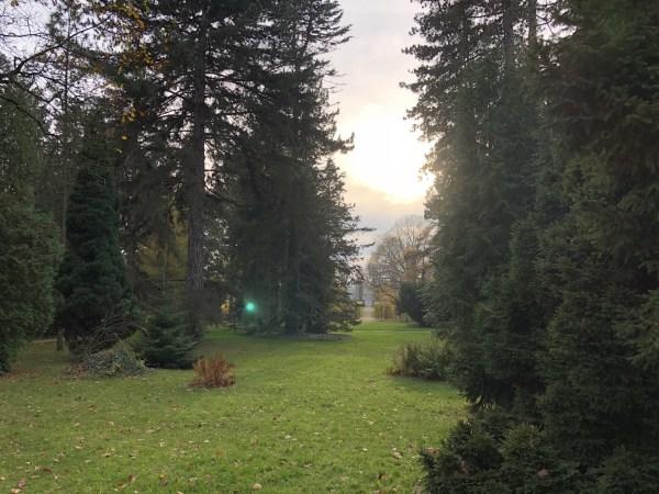 Schloss & Park Pillnitz 10