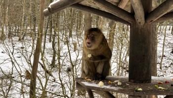 Tierpark Gera 13
