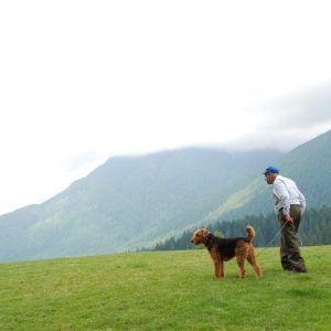 Un hombre paseando con su mejor amigo en plena naturaleza