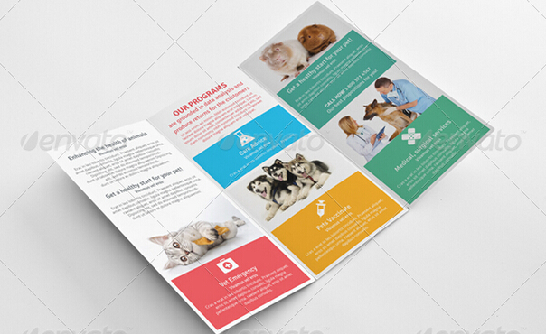 10 Professional Clinic Brochure Templates To Introduce