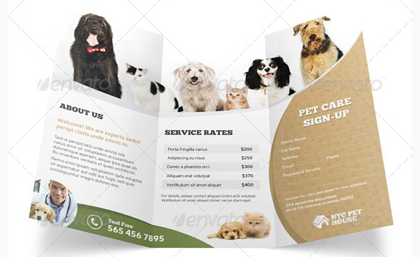 8 Excellent Pets & Animal Brochure Templates To Facilitate Your Pet