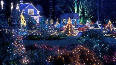 Christmas Lighting Tips