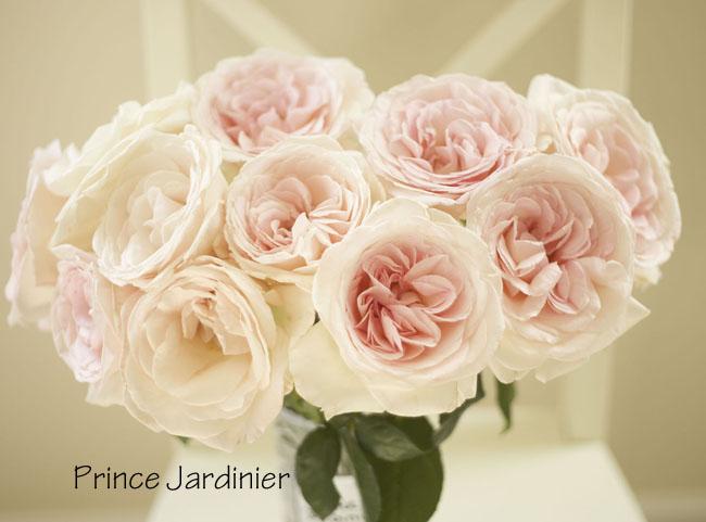 Rose Color Study  Flirty Fleurs The Florist Blog