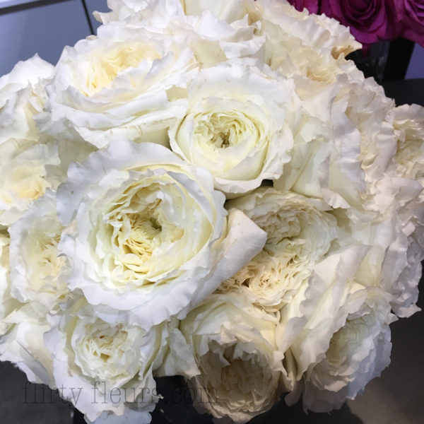 Garden Roses Direct  Flirty Fleurs The Florist Blog  Inspiration for Floral Designers