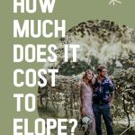 """A small image of an eloping couple in a vineyard with the overlay text """"How Much"""