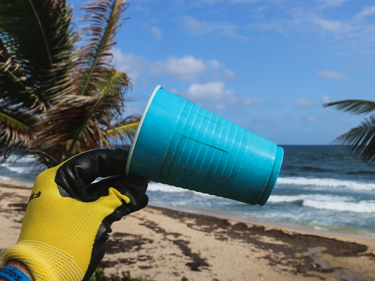 Volunteer to clean the beach, travel climate friendlier