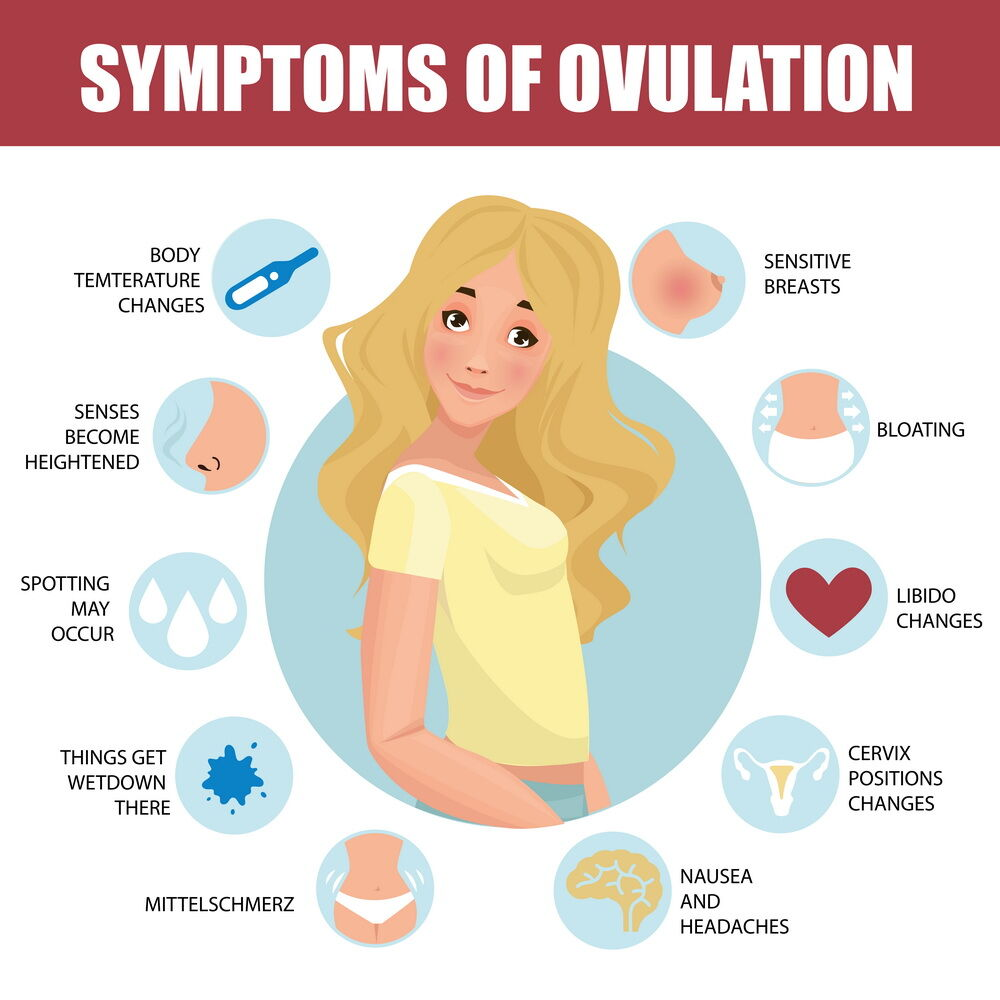 what is ovulation symptoms