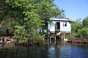 Homes on stilts among the mangroves