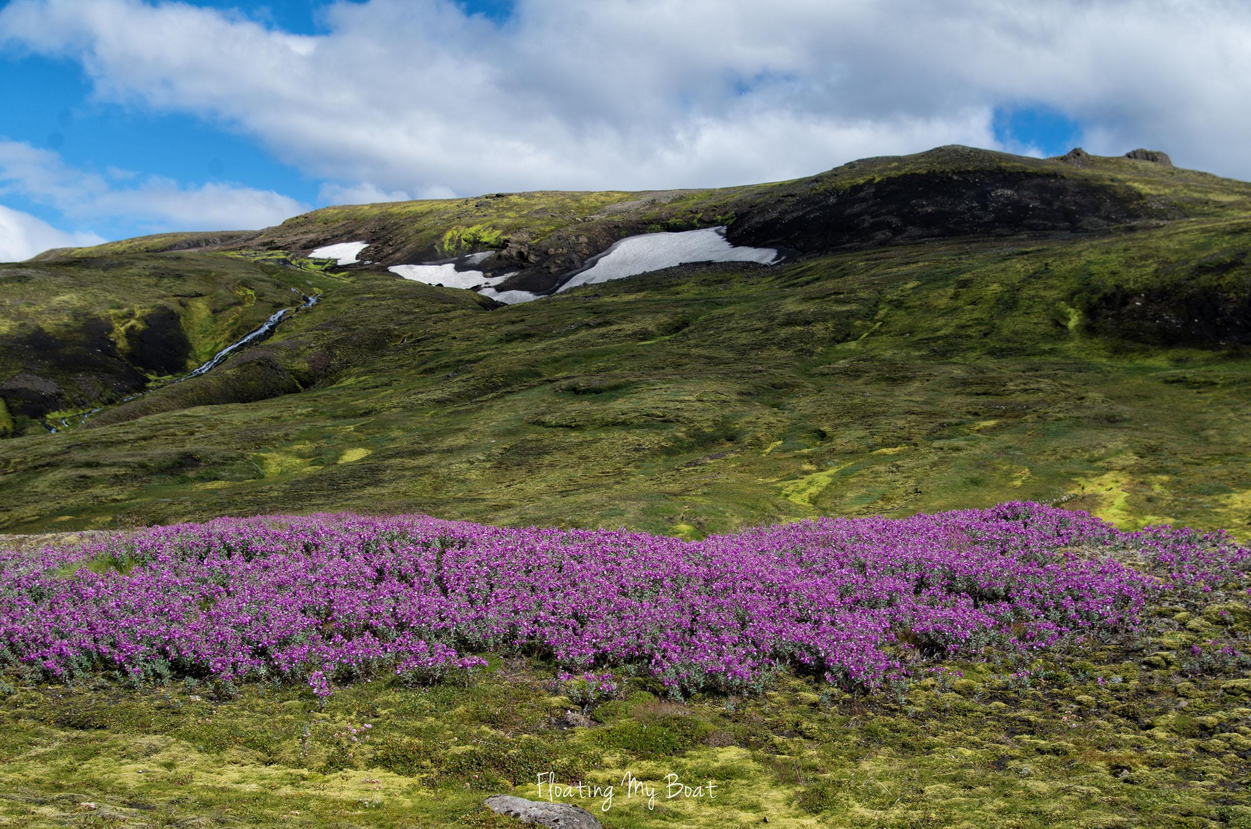 trekking-vatnajokull-iceland-20