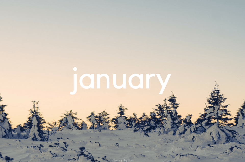 Month in review - January