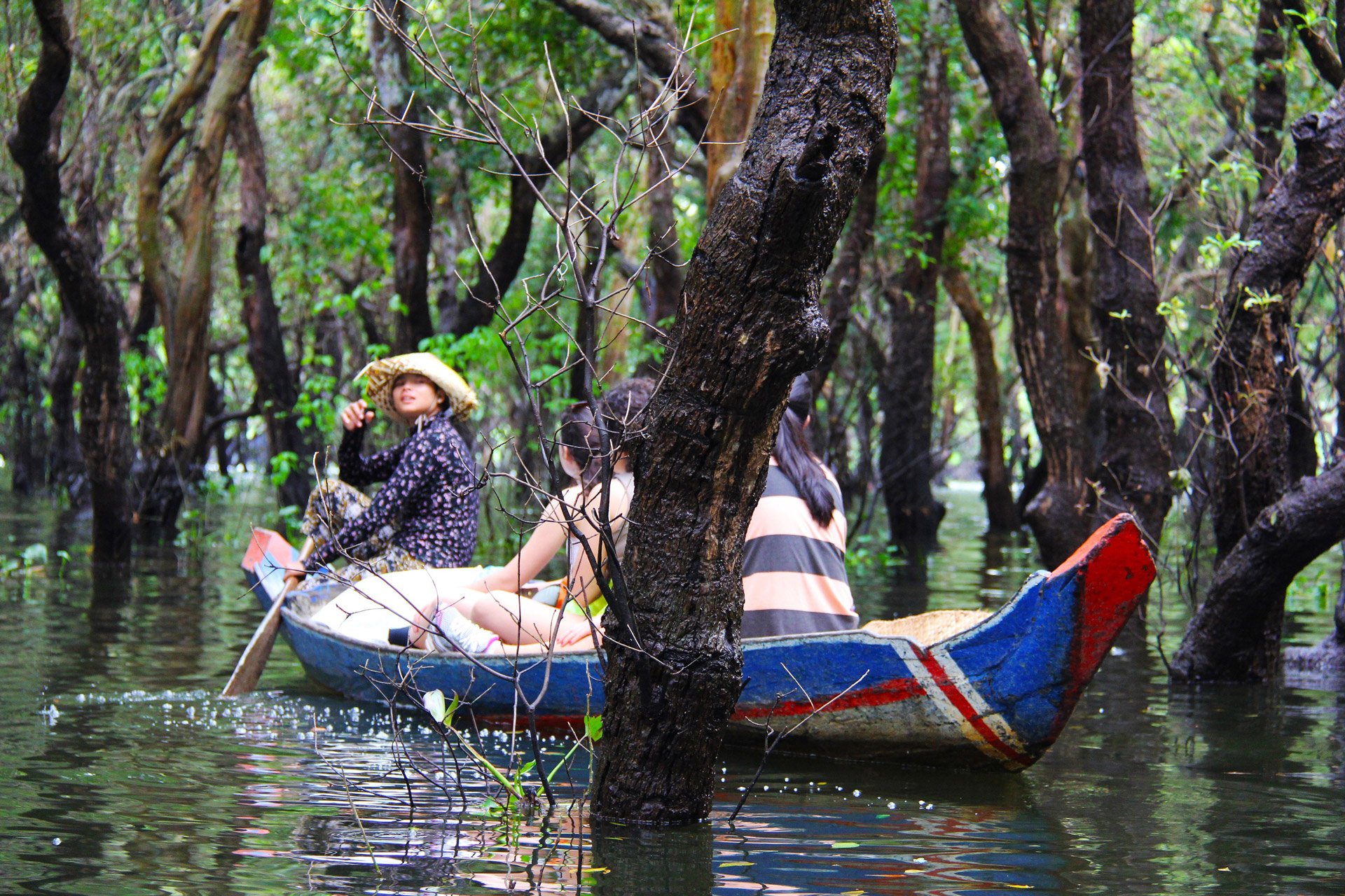 Tonle Sap Flooded Forest