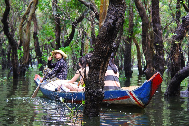 Flooded Forrest in the best Siem Reap floating village