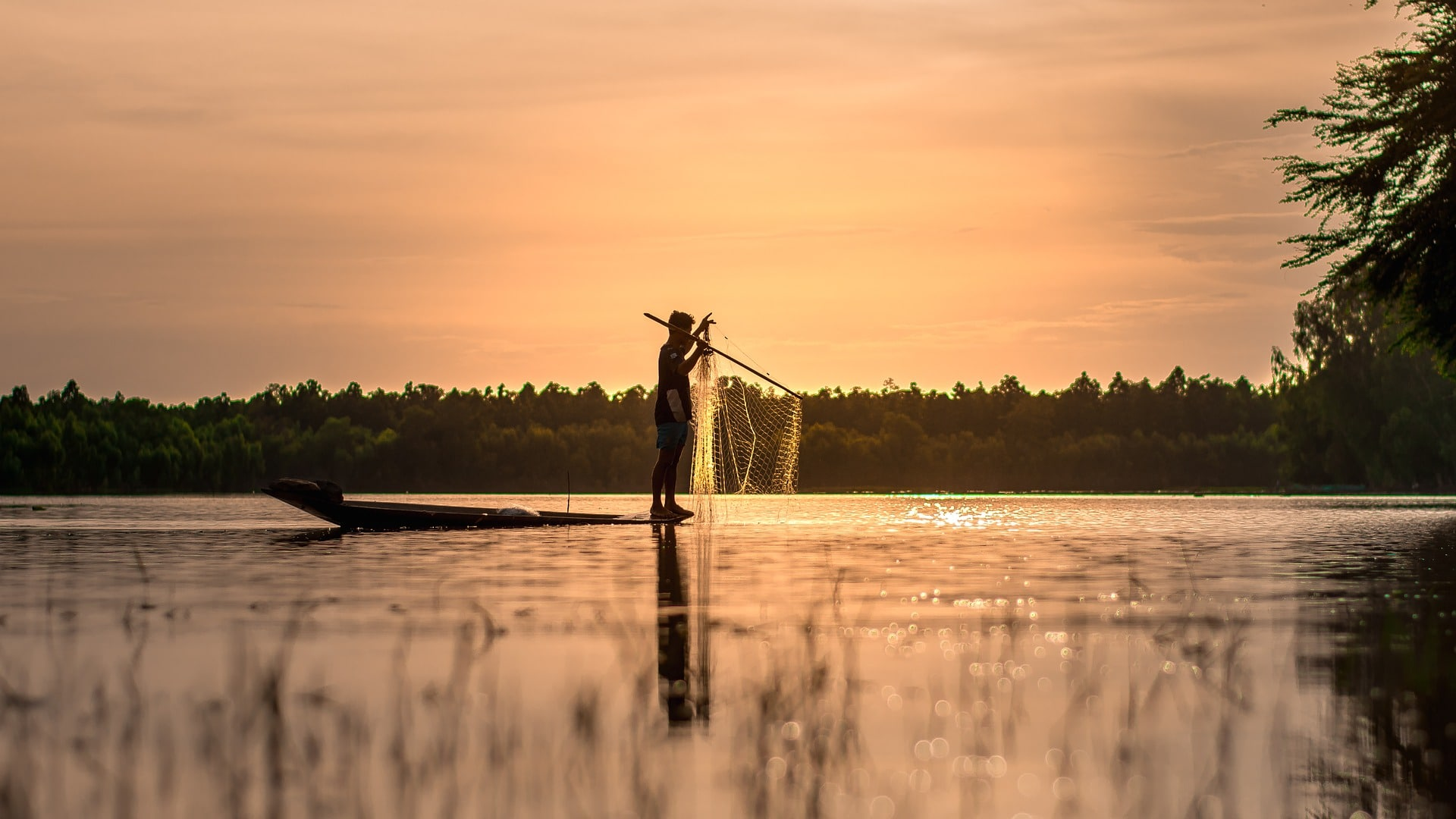 Fishing in Siem Reap, Cambodia
