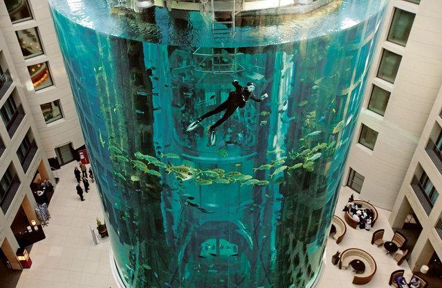 Aquarium-In-Radisson-Sas-Hotel-1