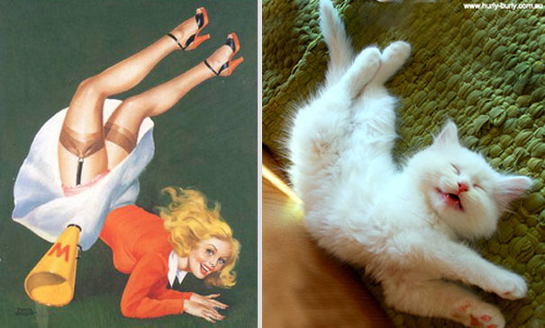 cats-that-look-like-pin-up-girls-10