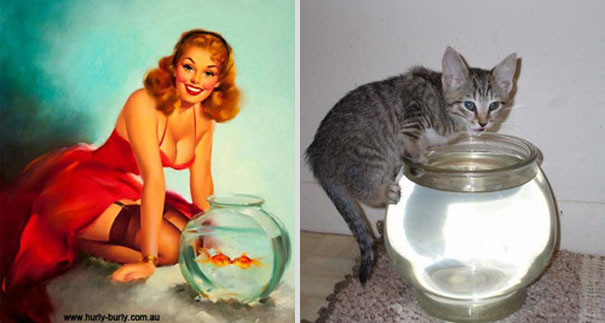 cats-that-look-like-pin-up-girls-14