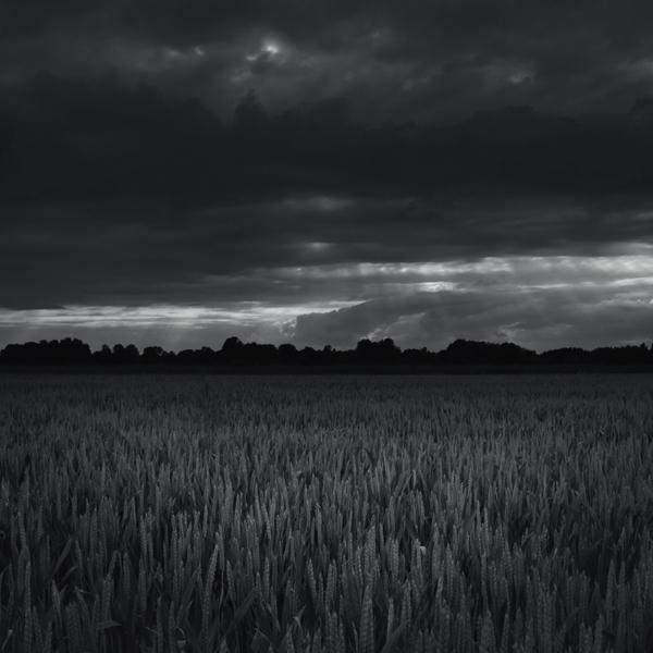 Heckel-Landschaft-6