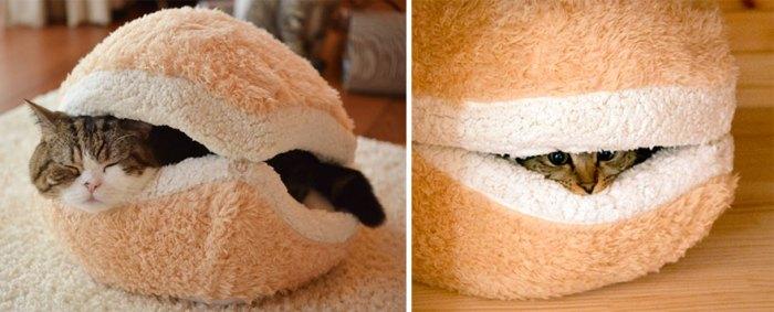 貓咪漢堡床