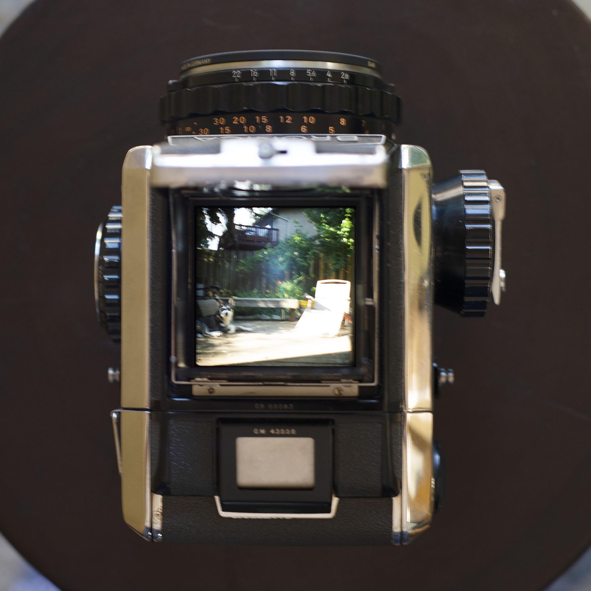 Bronica S2 view through the waist level finder