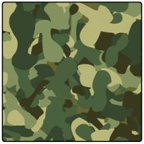 Camo Pattern Icon