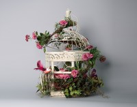 Bird Cage Decorated with Flowers, Bird and Butterflies ...
