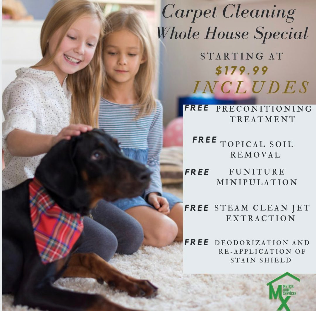 Carpet Cleaning with Stain Removal
