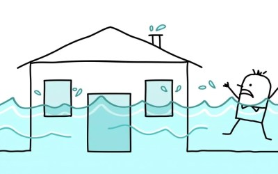 What To Do If You Have Water Damage in Toronto