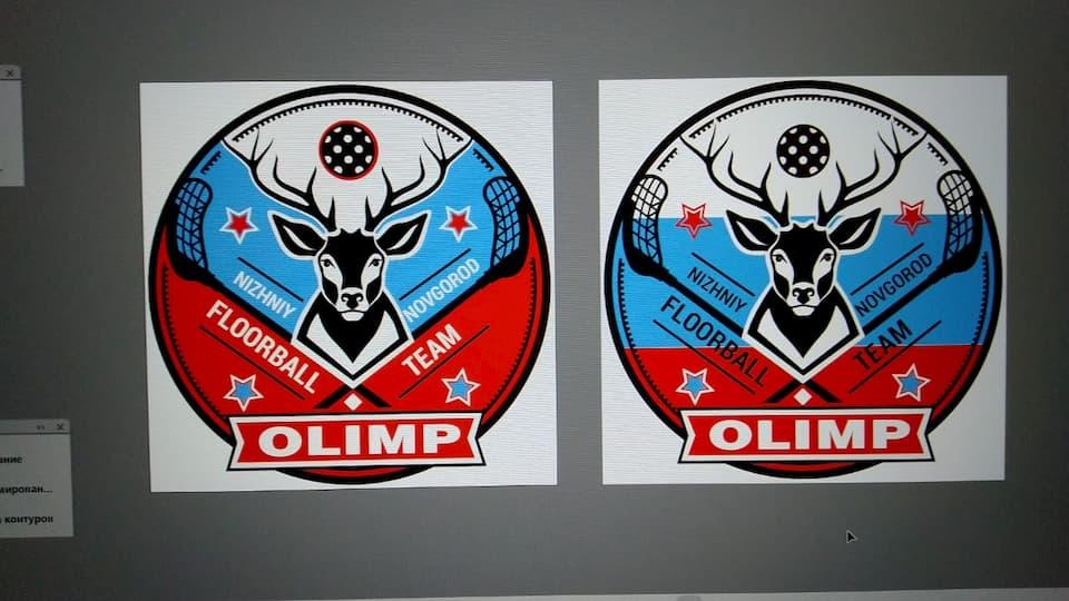 Блоки цвета Российского флага разместить граница рогов оленя.