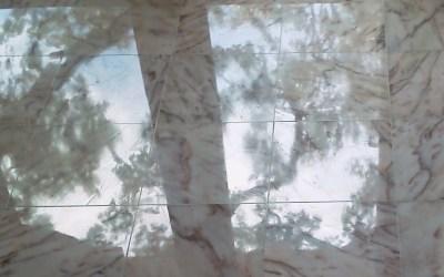 St. Petersburg Marble Floor Polishing