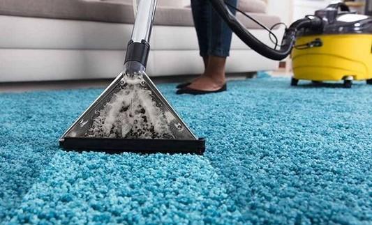 best carpet protection buffalo ny