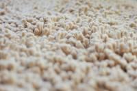 Carpet Flooring: Reviews, Best Brands & Pros vs. Cons ...