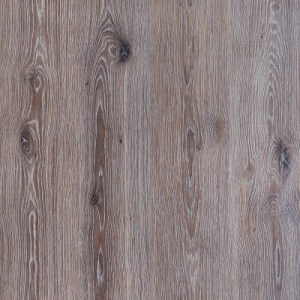 O128 – Penedes Oak