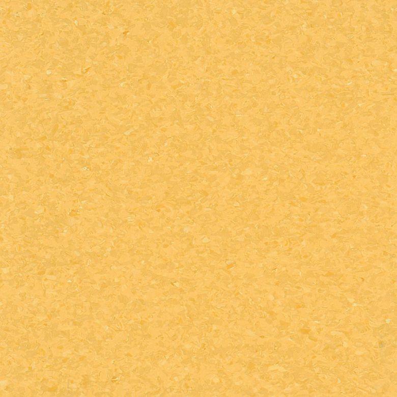 Maize Yellow – FPH5436271