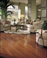 Living Rooms : Flooring Ideas - Room Design and Decorating ...