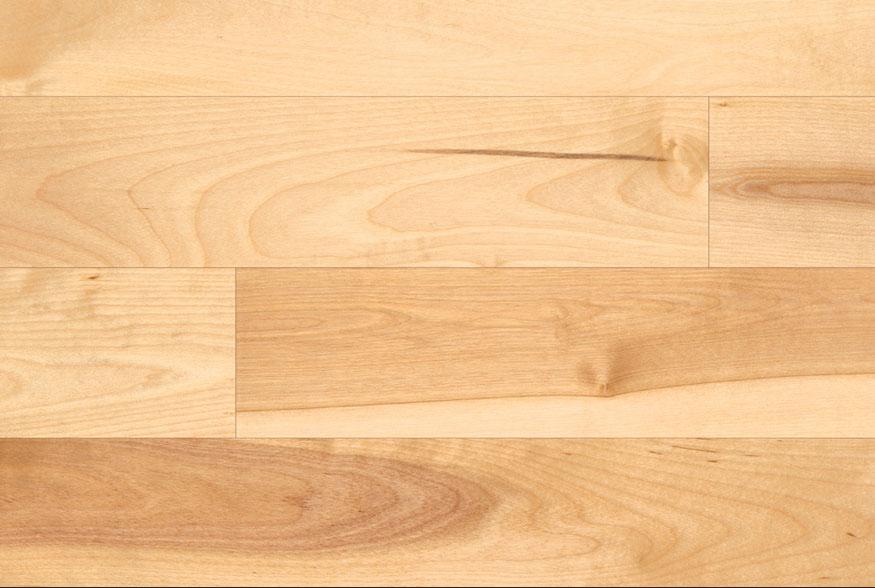 Model Birch Hardwood Flooring Burnaby Vancouver 6045581878