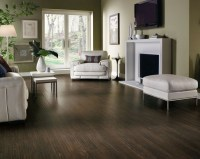 Dark Laminate Flooring: Can Bring the Beauty to Your Home ...