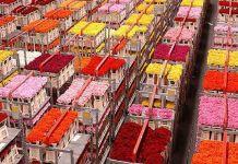 Distribución del mercado de flores ecuatorianas en la UE