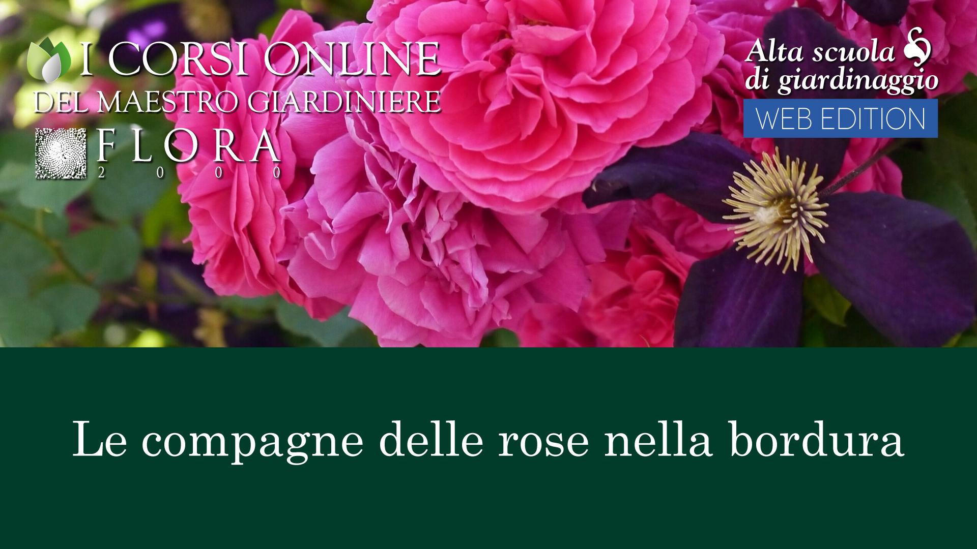 WEB EDITION I CORSI ONLINE  Flora 2000